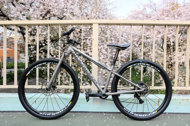 titanium MTB in front of cherry blossom tree
