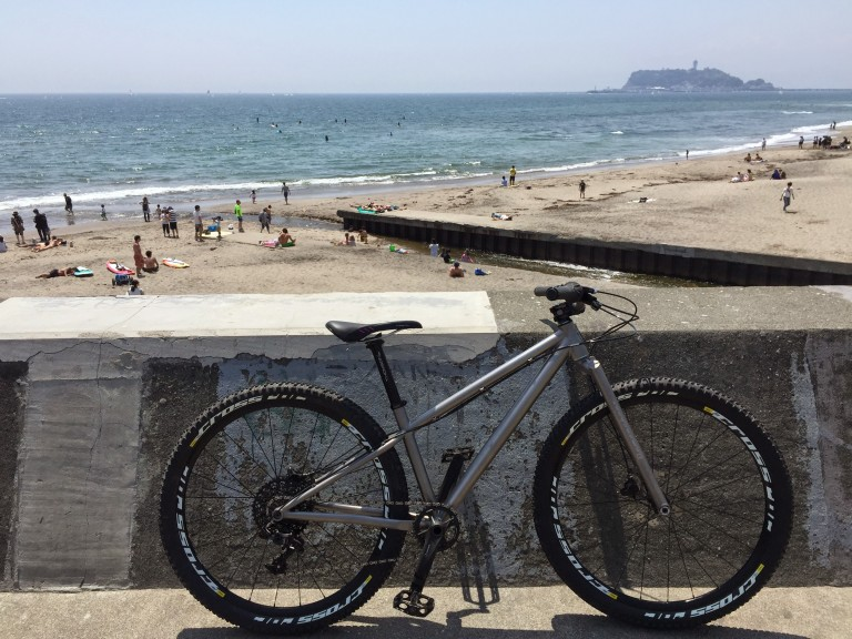 Titanium MTB at the beach